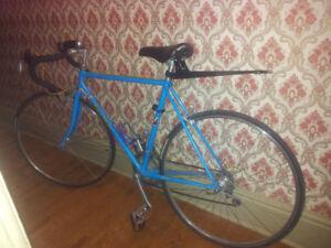 Steve Bauer Road Bike