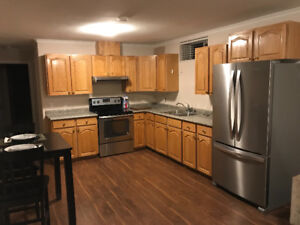 Fully Furnished 1 Bedroom Bsmt Ste in North Burnaby