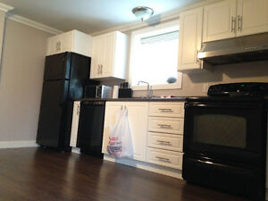 2 Bedroom Bright Basement Apartment - Free January Rent