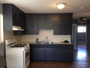 Three Bed room Upper level of  house for rent in Hope B.C