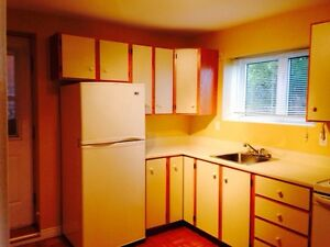 Two bedroom basement apartment- Torbay