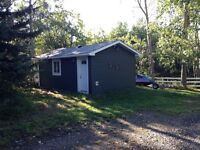 Seperate building Bachelor suite on acreage for rent