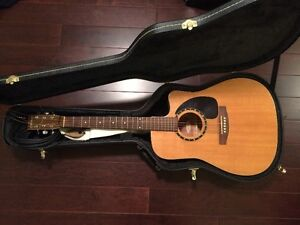Norman Guitar Encore B20 with case