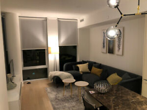 Luxury furnished 1 bdrm apt- Yorkville -boutique brand new condo