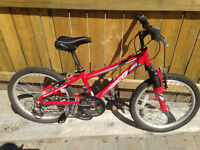 Kid's Norco Eliminator Bike