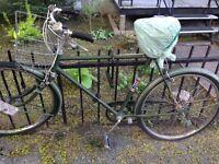 Vélo CCM Vintage/Old School