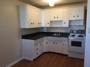 1 bedroom apartment - available immediately - 102 ave & 75 st