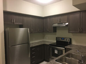 Brand new condo for rent
