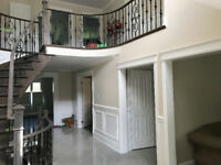 Eco Friendly Reliable Professional Painters