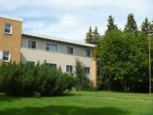 Clean, Secure, & Affordable, Near Westmount Mall, Adult Building