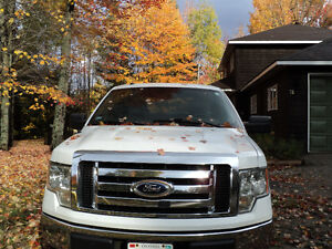 2009 Ford F-150 xlt Pickup Truck with 8 foot box $4000$ obo