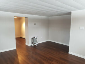 Spacious, Bright and Newly Renovated One Bedroom