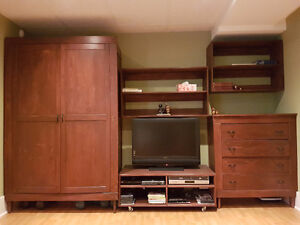 Entertainment unit, furniture only.