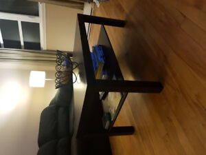 FREE! GRATUIT! Living Room couch/love seat - canapé/causeuse