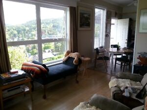 DOWNTOWN ROSSLAND - 1 bedroom Apt - avail. April 1