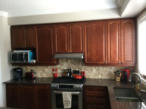 Upgraded Kitchen Cabinets/ Granite/Island/Sink/Faucet