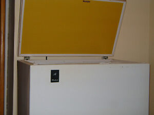 Freezer with storage tray.