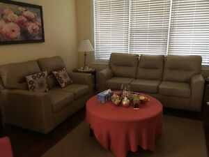 Leather 3 seats sofa and love seat