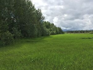 159 Acres in Goodridge Alberta (Bonnyville MD) Strathcona County Edmonton Area image 5