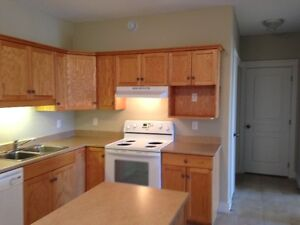 See it TODAY, move TODAY! Clean, open concept, pet friendly $709