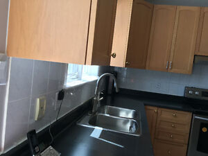 Black laminate kitchen counter and double sink- almost free
