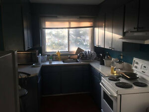 One Month/ per day Sublet at Erb/ Westmount (Dec,16 to Jan, 17) Kitchener / Waterloo Kitchener Area image 4