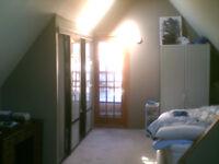 Two floor apt in Hintonburg