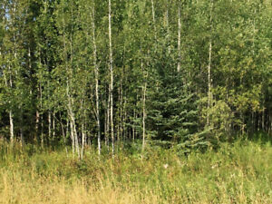 Recreational Lot for sale Caragana, Sk