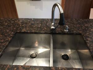 Blanco Kitchen sink (with Kitchen Aid Garburator)