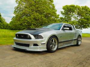 2014 Mustang GT - WIDE BODY - Custom car