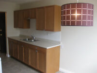 Fully Renovated, Close to U Of A, South Side-Avilable Now!!!