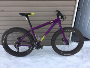 Fat Bike Sliverback