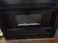 Twin Star Electric Fireplace Insert / Foyer Electrique