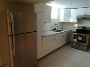 NEWLY RENOVATED & BRIGHT 2-Bedroom Apartment Hamilton Mountain