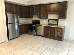 Brand New One Bedroom Apartment - Downtown Fonthill