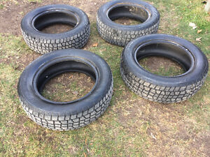 225/60R17 Avalanche Tires