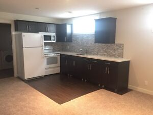 Nice 2 bedroom apartment suite included utilities