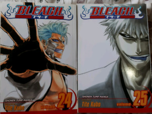 Bleach volumes 24 and 25