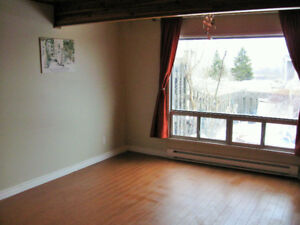 Nov 1 ... 3 bedroom townhouse ... dog / pet friendly...yard