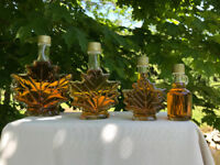 Maple Syrup - Wedding / Shower Favours - The Sweet Gift - $2.50!