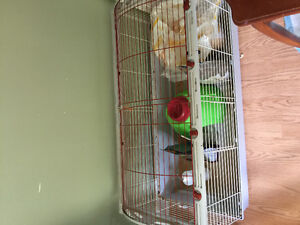 Living World Large small animal cage