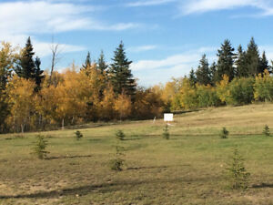 Two bare acreages in executive subdivision