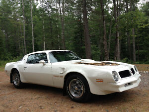 pontiac trans am original 1976