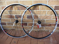 Set de roue Shimano  R-501