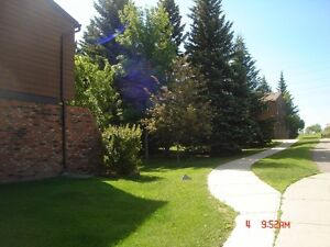 Beautiful and Spacious Southampton Dr SW Townhouse
