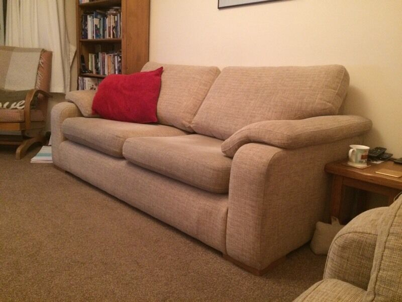 2 and 3 seater sofas ( willing to sell separate)