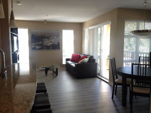 2 Bed 2 Bath Bright Fully Furnished Condo - Great Location!