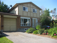 Reno'd 4 Bed/1Bath 2-storey Detached house WHITBY Downtown