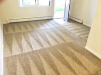Professional Deep Steam Carpet Cleaning.  AFFORDABLE PRICES!