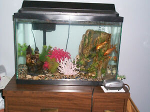 Fish Tank, With all the decorations, 4 gold fish,